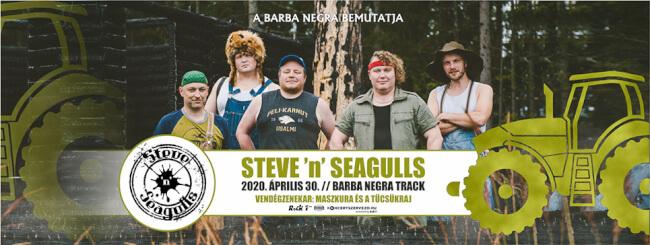 STEVE 'n' SEAGULLS Barba Negra Track